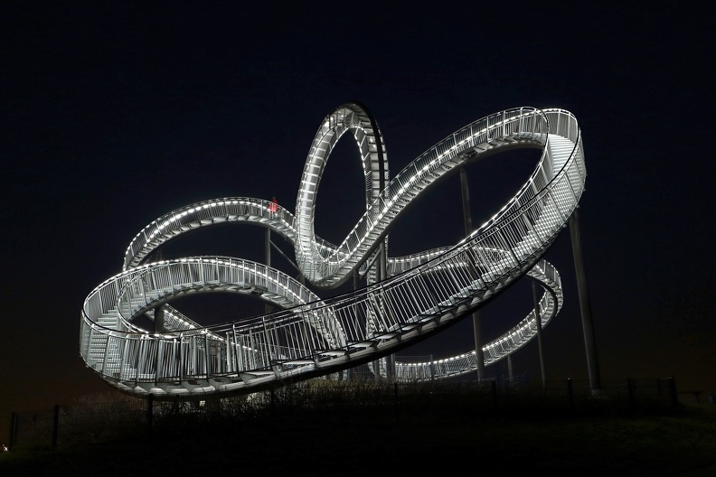Tiger&Turtle 2